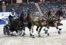 Újabb szakág lovas pályáival bővül a Kincsem Lovaspark